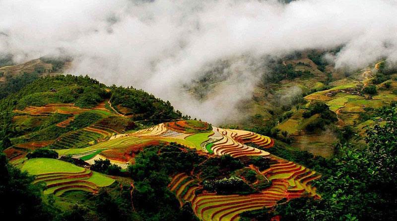Thung Lũng Mường Hoa 1