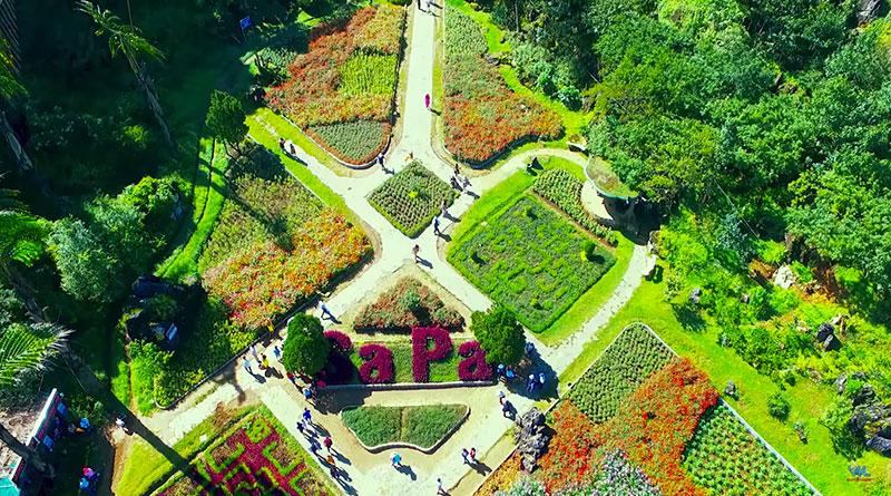Vườn Hoa Hàm Rồng Sa Pa Một Đà Lạt Thu Nhỏ