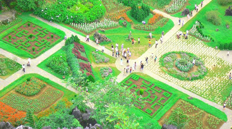 Vườn Hoa Hàm Rồng Sa Pa